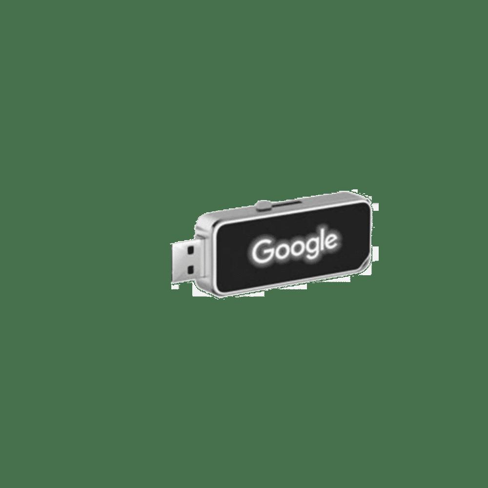 USB Drive FLM 25