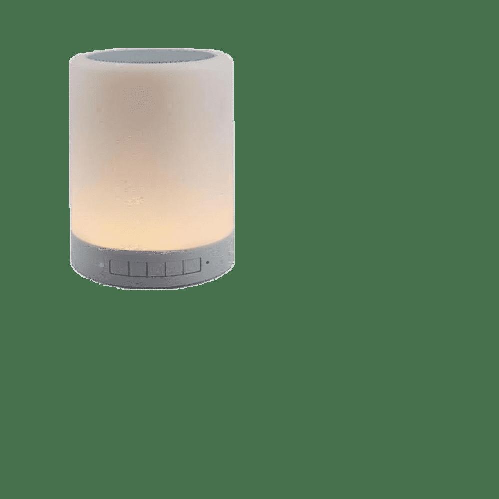Speaker SPK 06